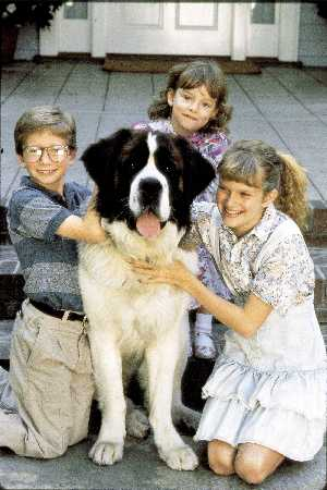 Hund Beethoven